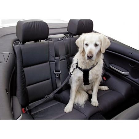 safety belt size l, black  adjustable