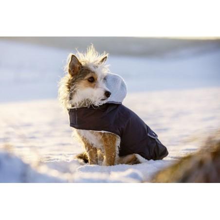 TEDDY dog coat Girth measurement 32-43cm