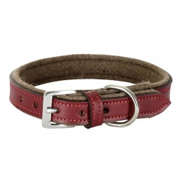 Collar Royal Pets 20mmx30-38cm